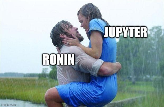 ronin-jupyter-1